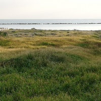 2199 m2 seafront land In Pervolia